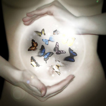 butterflies-in-your-stomach-83195