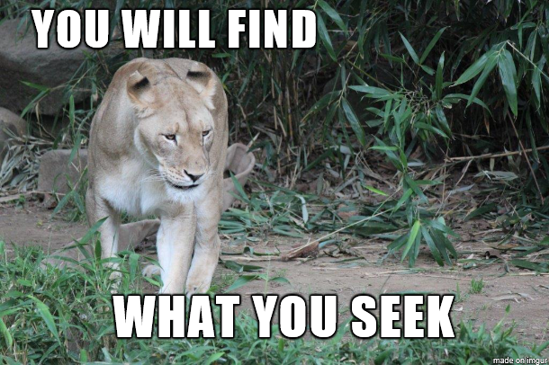 You will find what you seek