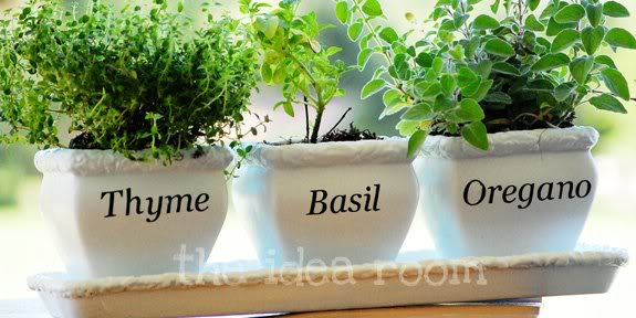 herb-pots-with-Silhouette