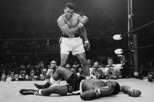 aliknockout.jpg