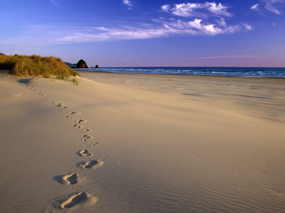 Nature___Beach___Footprints_in_the_sand_042513_