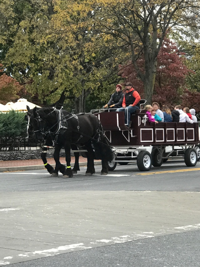 horse and carriage (Nov. 2017)