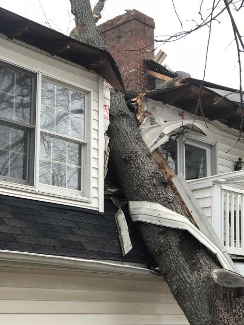storm damage 3